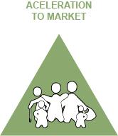 Aceleration to market