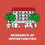 Research of opportunities